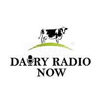 Dairy Radio Now