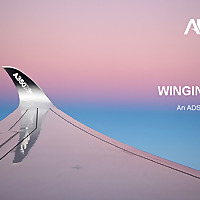 Winging It | An ADS Podcast