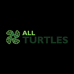 All Turtles Forum