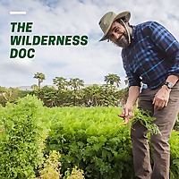 The Wilderness Doc