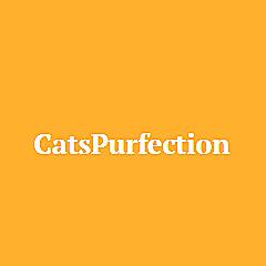 CatsPurfection