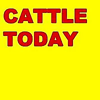CattleToday