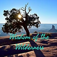 Wisdom of the Wilderness