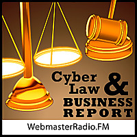CyberLaw and Business Report