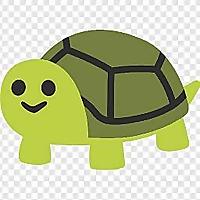 Reddit » Tortoise