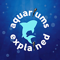 Aquariums Explained