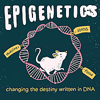 Epigenetics - changing the destiny written in DNA