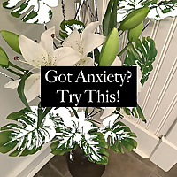 Got Anxiety? Try This!