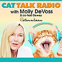 Cat Talk Radio
