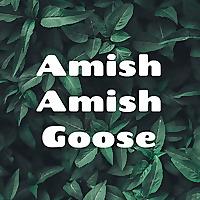 Amish Amish Goose