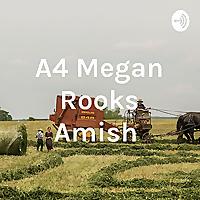 A4 Megan Rooks Amish