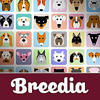 Breedia » Golden Retriever