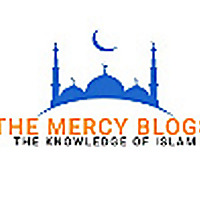 The Mercy Blogs