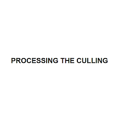 Processing The Culling