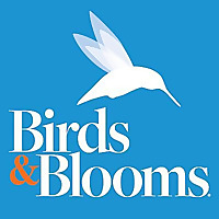 Birds and Blooms » Birding