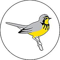 Birds Canada | Oiseaux Canada