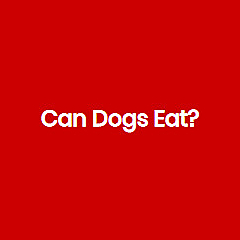 Can Dogs Eat?