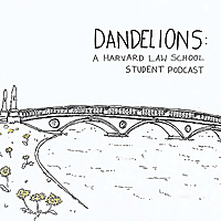 Dandelions   A Harvard Law School Podcast