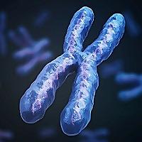 细胞和生物科学