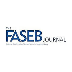 The FASEB Journal