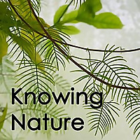 Knowing Nature