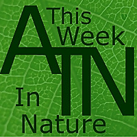 This Week in Nature