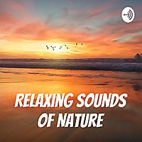 Nature Sounds for Relaxation and Meditation