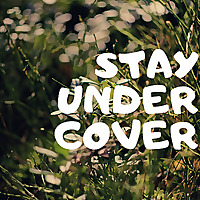 Stay Under Cover Minnesota Soil Health Coalition