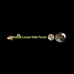 Animal Lovers Web Forum