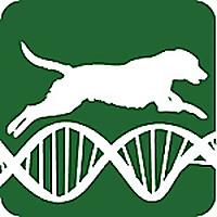 Canine Medicine and Genetics