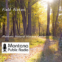 Field Notes from the Montana Natural History Center