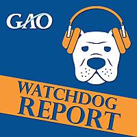 Watchdog Report