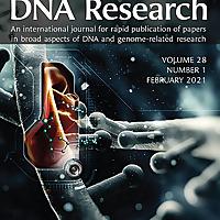 DNA研究