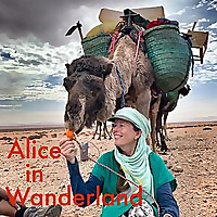 Alice in Wanderland