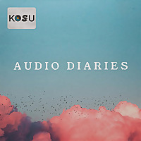 Audio Diaries