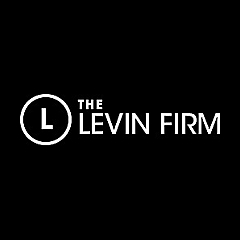 The Levin Firm » Auto Accidents