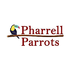 Pharell Parrots World