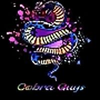 Cobra Guys: A Cobra Kai Podcast