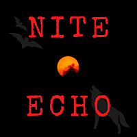 Nite Echo