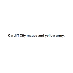 Cardiff City mauve and yellow army.