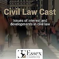 Civil Law Cast