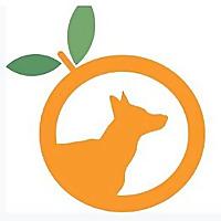 German Shepherd Rescue Of Orange County Blog