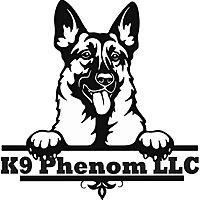 K9 Phenom Blog