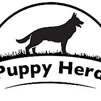Puppy Herd Blog