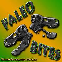 Paleo Bites