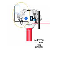 Survival Kit for The Mental / Bipolar Sundays
