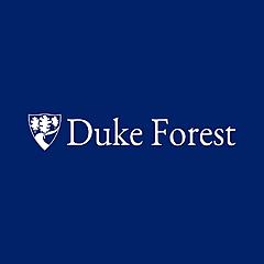 Duke's Forest School
