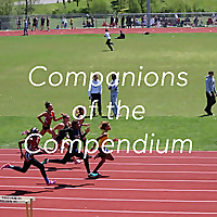 Companions of the Compendium