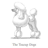 The Teacup Dogs