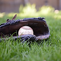 Parents Guide To Baseball